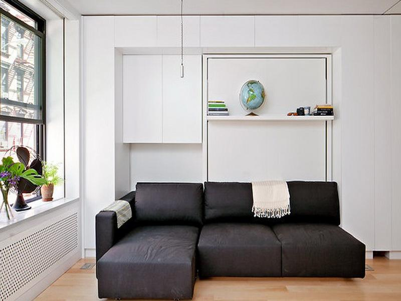 Image of: Cozy Murphy Bed with Sofa