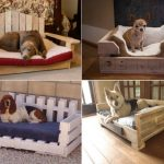 wooden pallet bed for dog