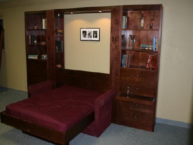 Image of: Awesome Contemporary Murphy Beds