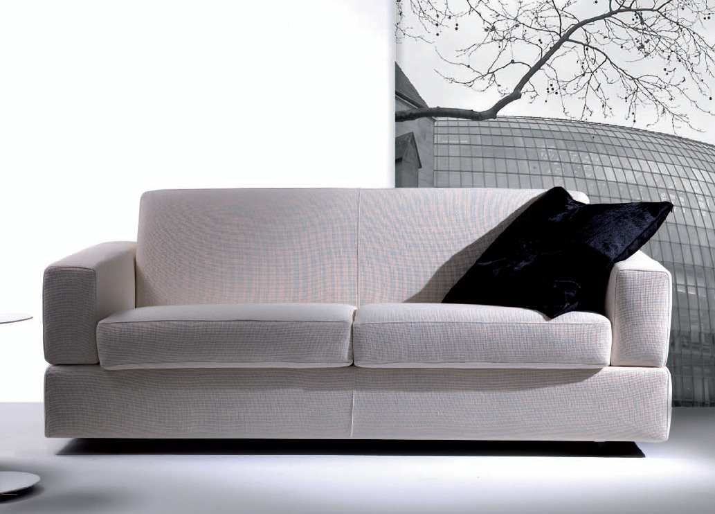 Image of: Classic Contemporary Sofa Bed