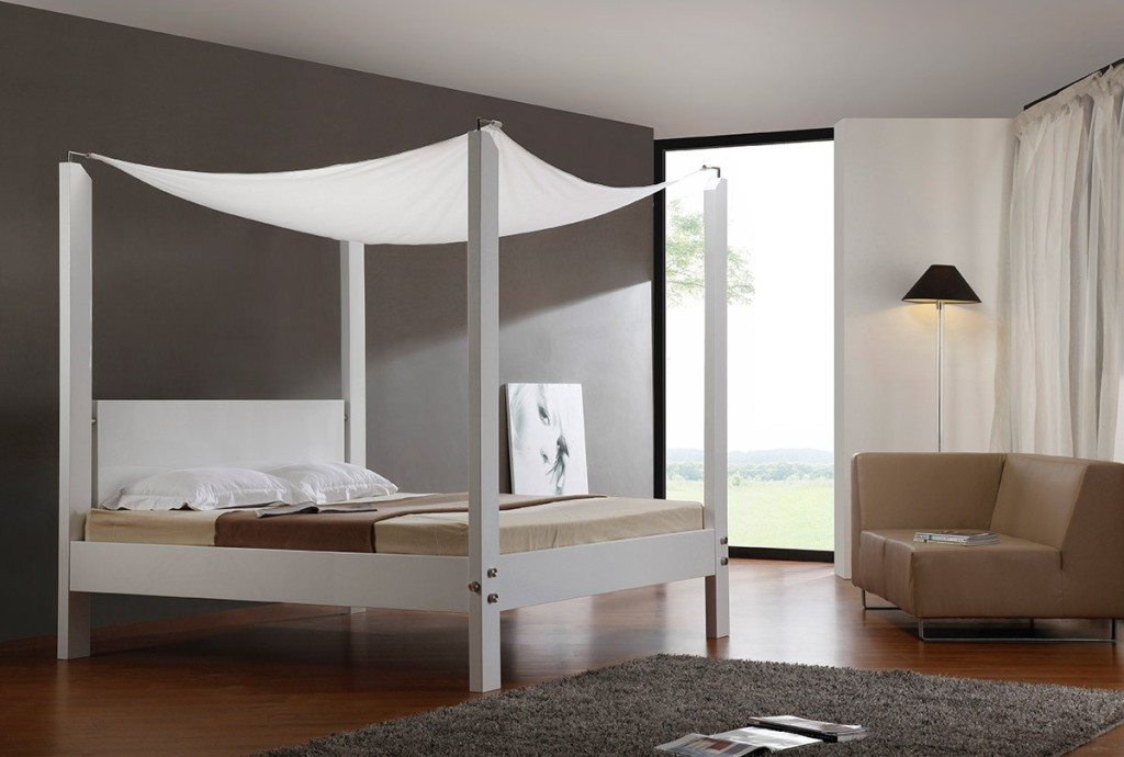 Image of: Contemporary Canopy Bed Ideas