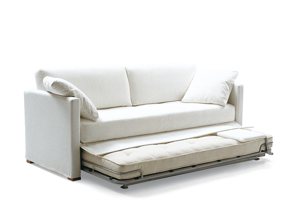 Image of: Modern Contemporary Sofa Bed