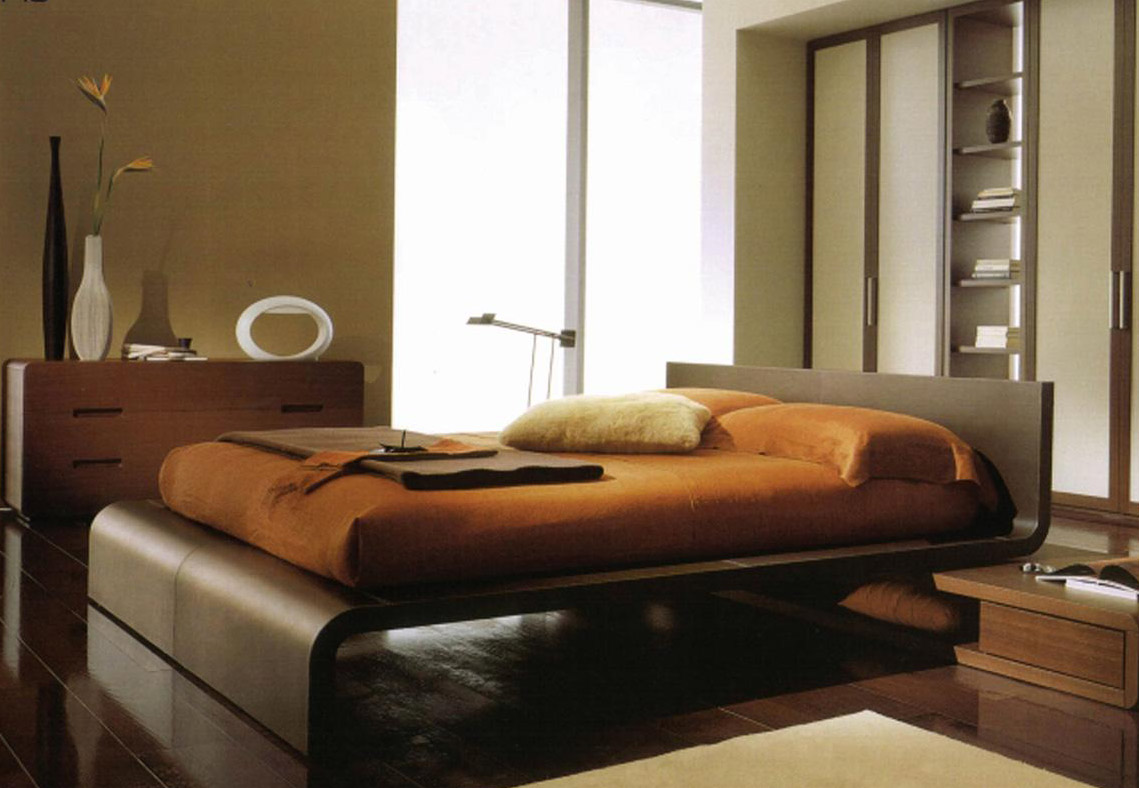 Image of: Traditional Contemporary Platform Beds