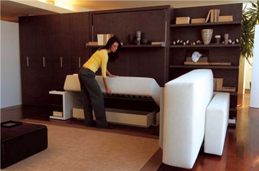 Image of: King Size Murphy Bed Plans