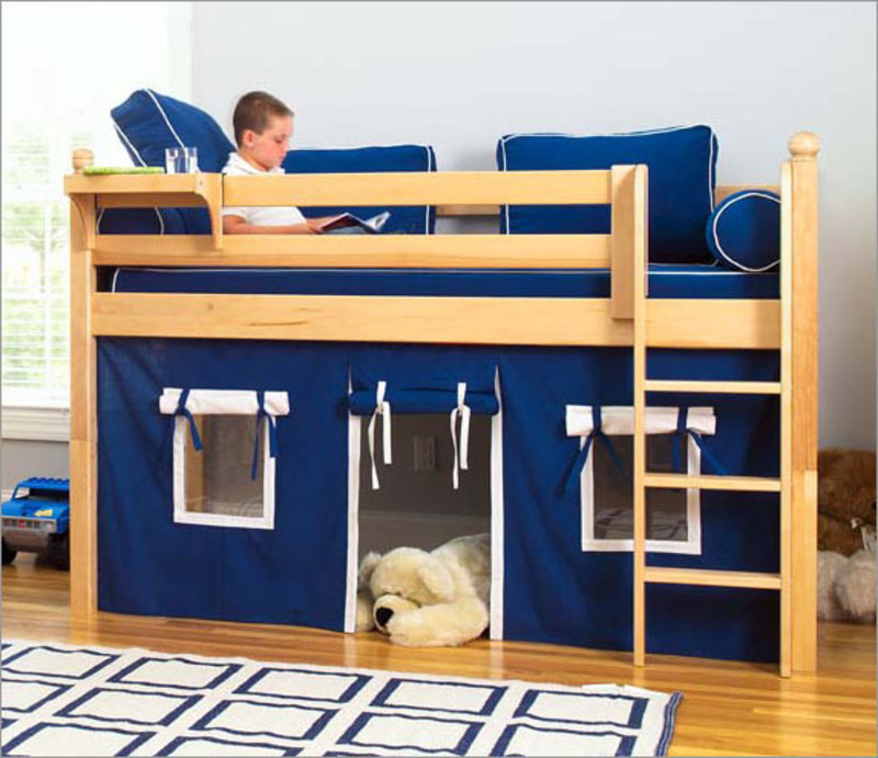 Image of: Boys Loft Beds Design