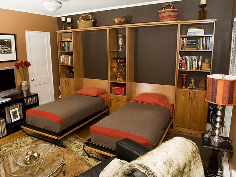 Image of: Beauty Twin Size Murphy Bed