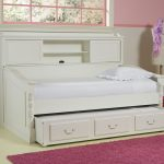 Twin Day Bed With Bookcase