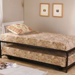 Twin Day Bed With Pop Up
