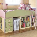 Twin Loft Beds for Girls