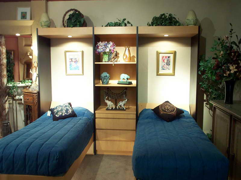 Image of: Twin Wall Bed Kids