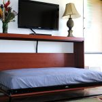Twin Wall Bed Type