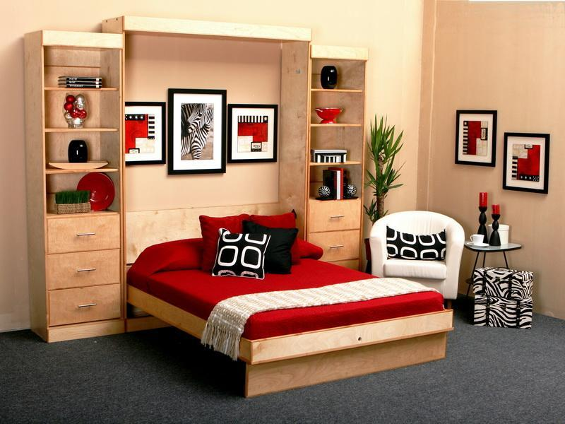 Image of: Wonderful Twin Size Murphy Bed