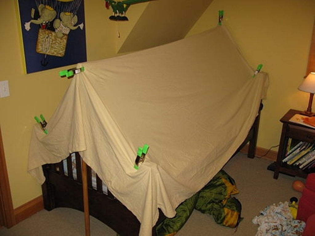 Image of: Toddler Beds Tent Canopy