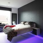 Decorating Bachelor Apartment Ideas