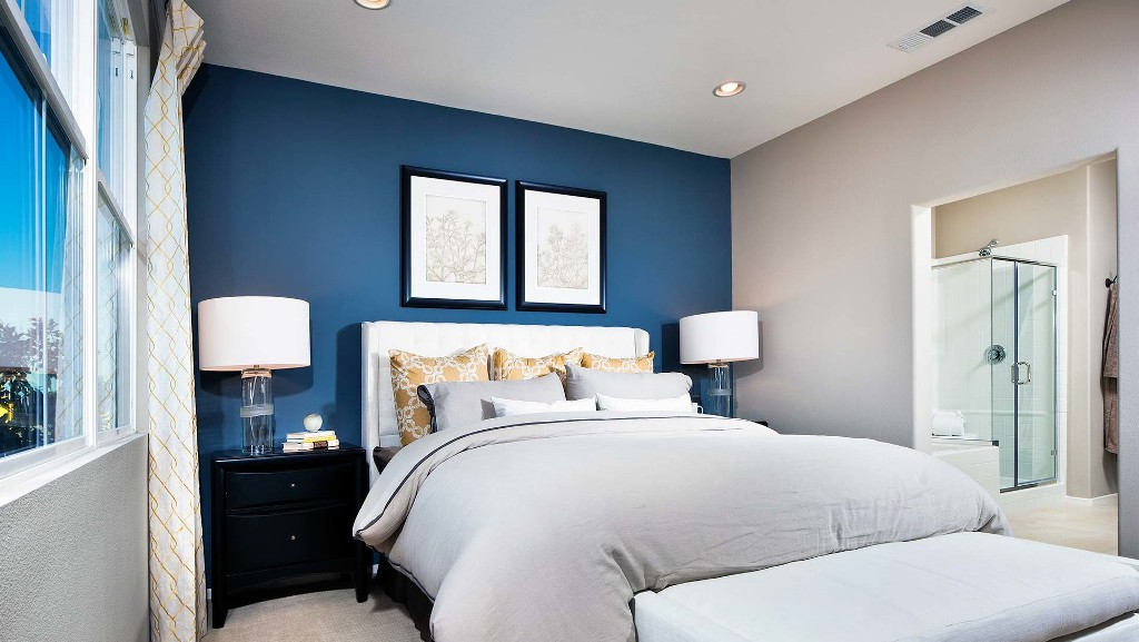 Image of: Accent Walls Bedroom