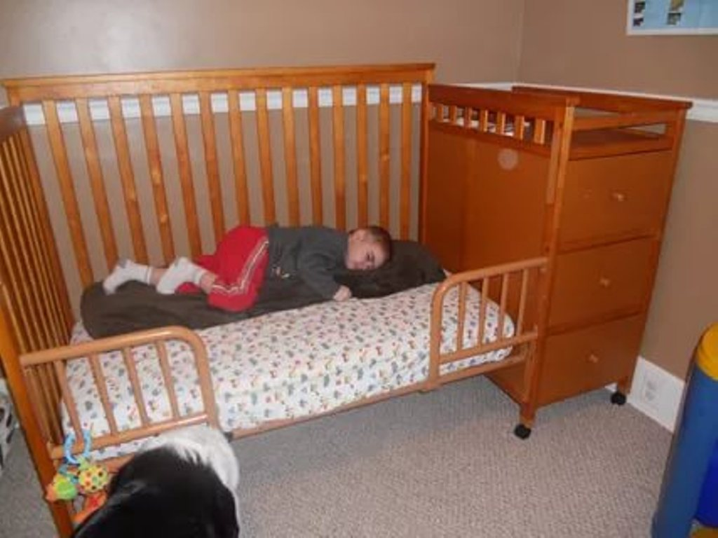 Image of: Cribs That Convert To Double Beds