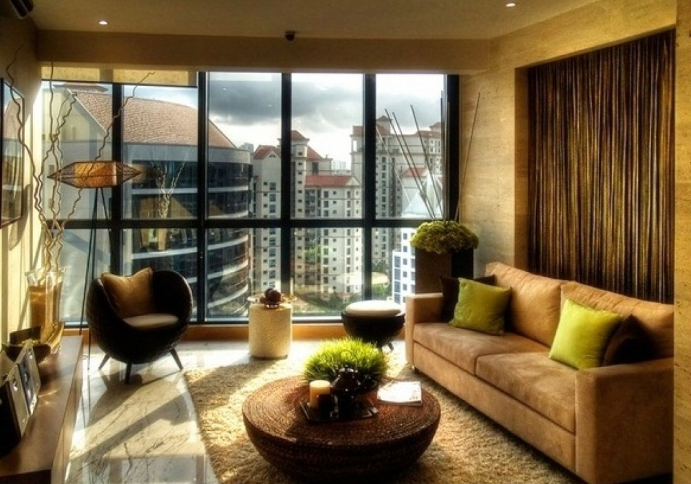 Image of: amazing apartment living room ideas