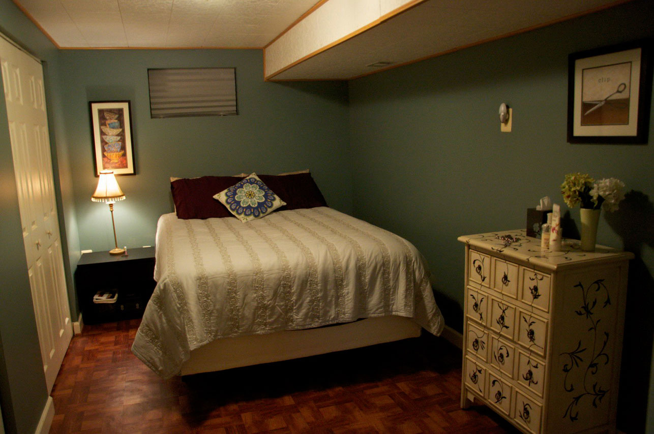 Image of: Basement Bedroom Ideas On A Budget
