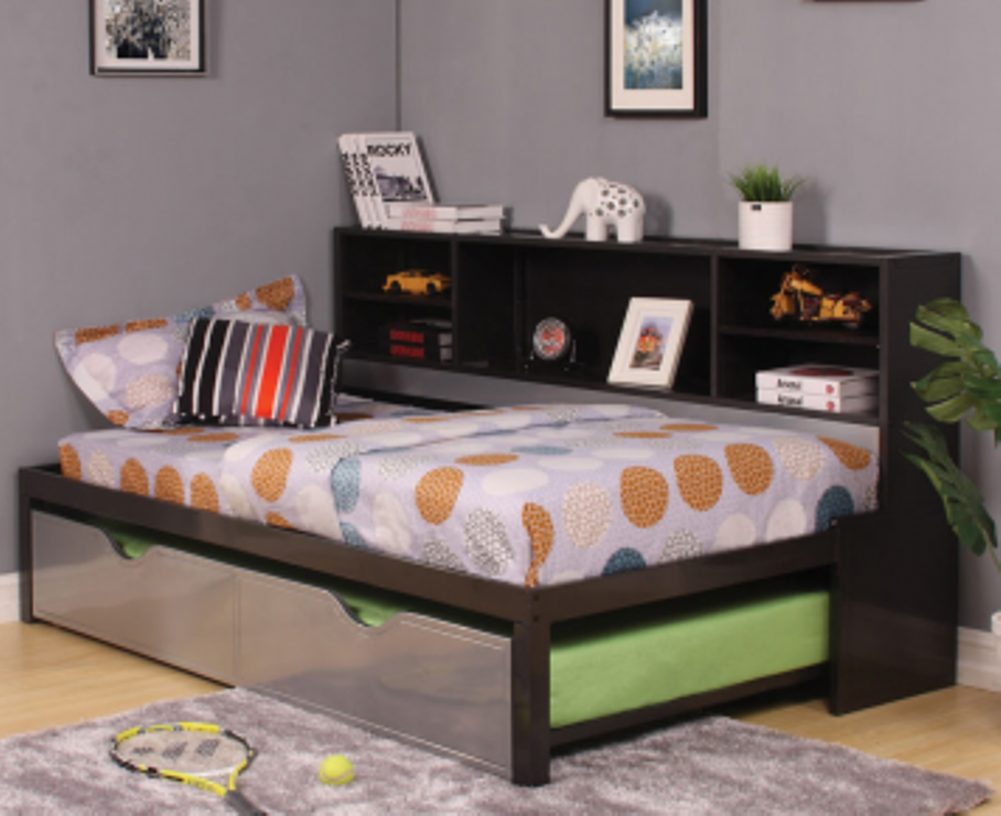 Image of: Bookcase daybed