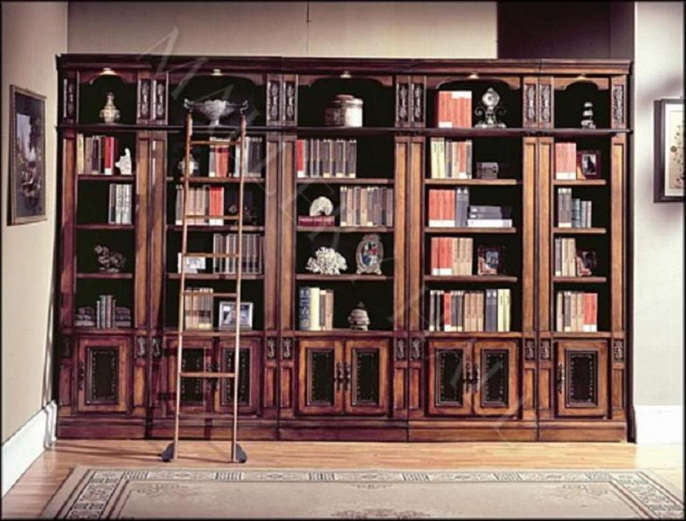 Image of: Bookcase with ladder and rail
