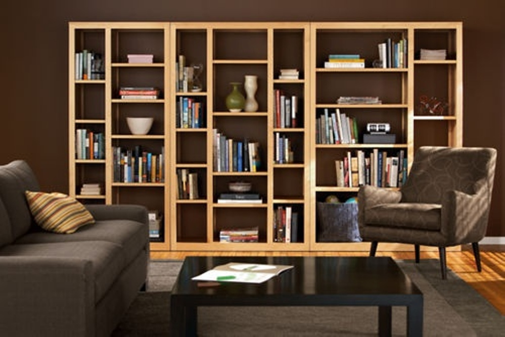 Image of: Build an open back bookcase