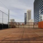 Clear Deck Netting