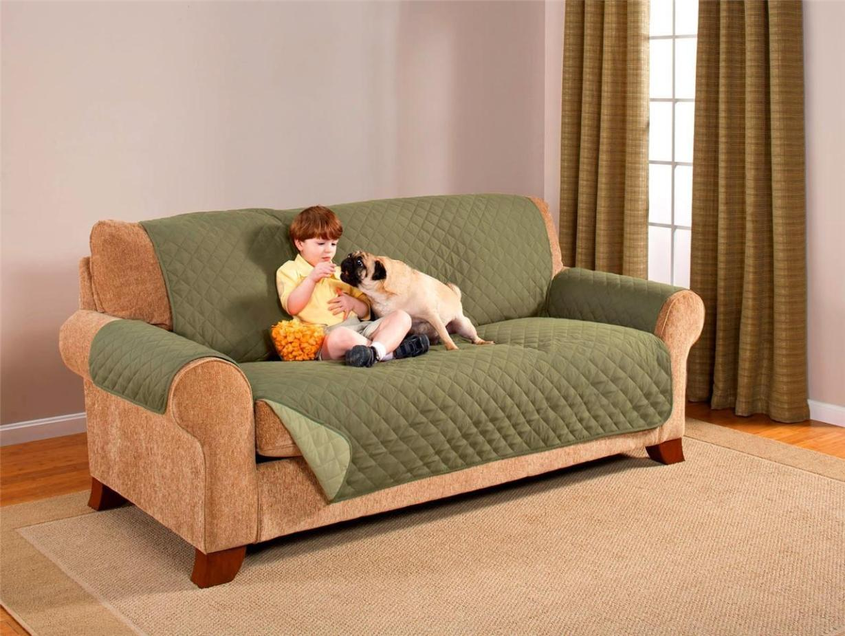 Image of: Couch Protector For Dogs