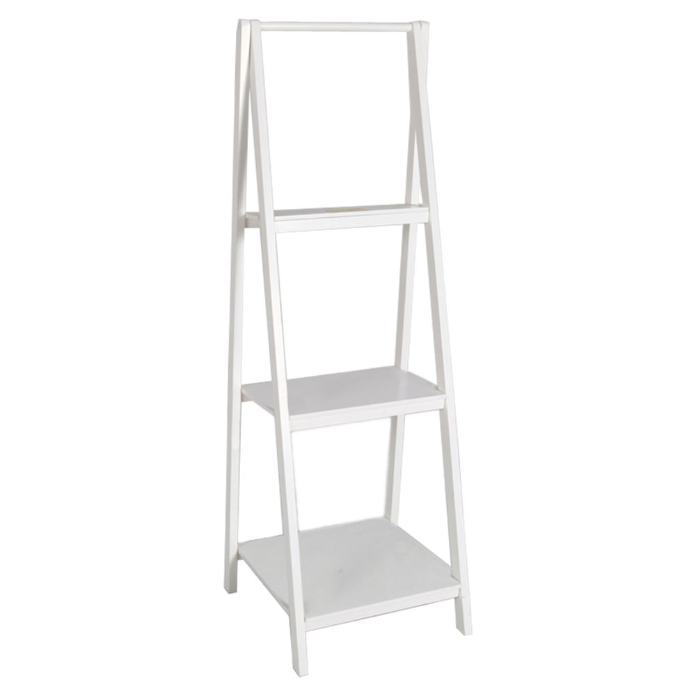 Image of: Creative White Ladder Bookcase