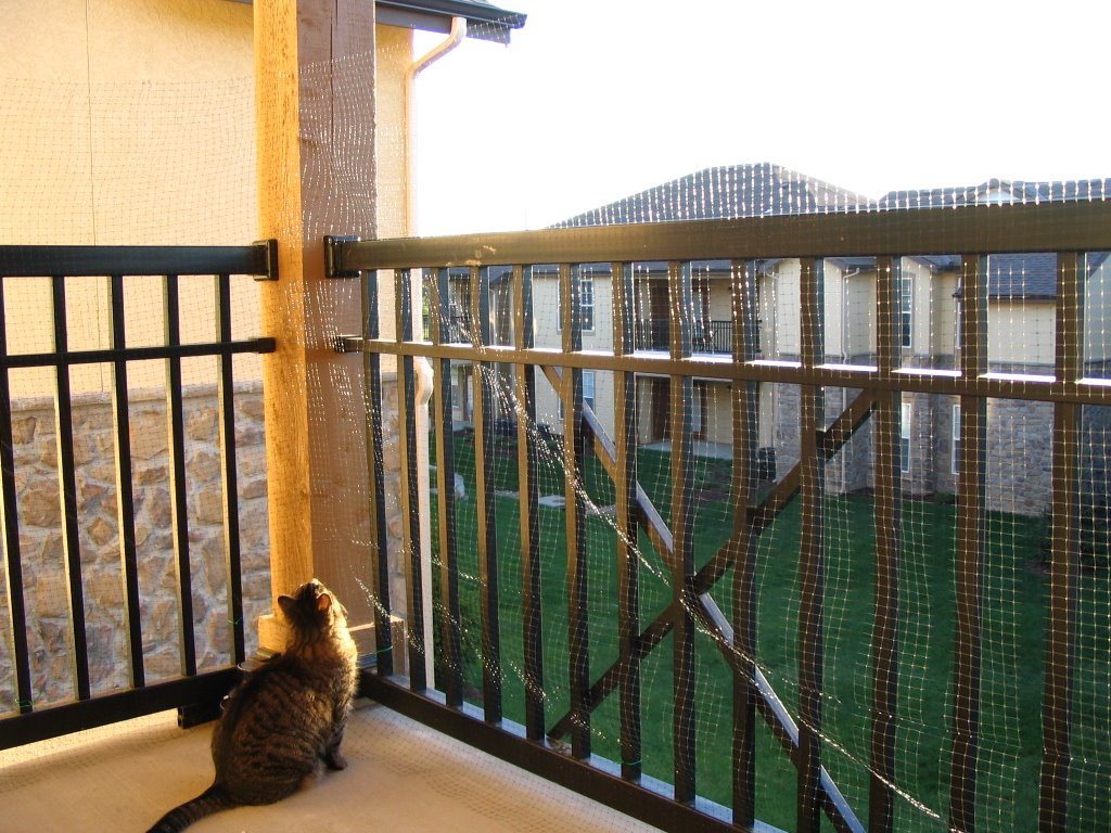 Image of: Deck Netting For Cats