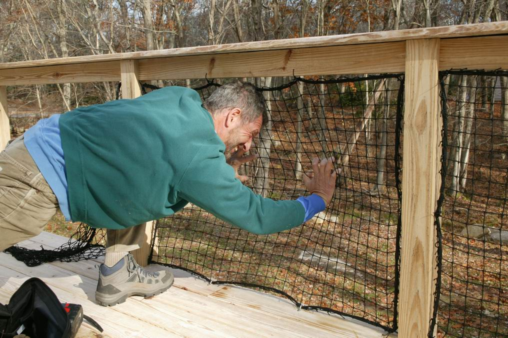 Image of: Deck Netting For Kids