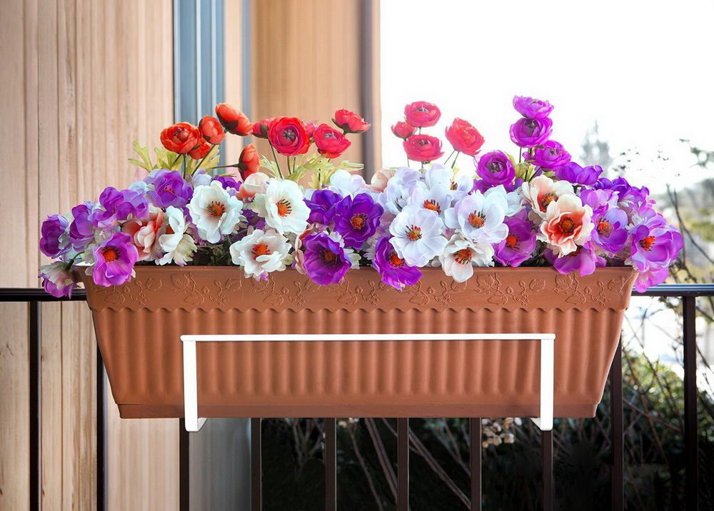 Image of: Deck Plant Hangers Flowers