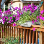 Deck Rail Planter Boxes Made With PVC