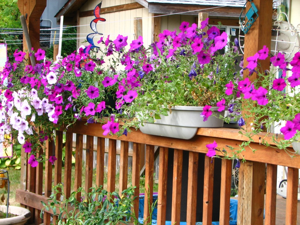 Image of: Deck Rail Planter Boxes Made With PVC