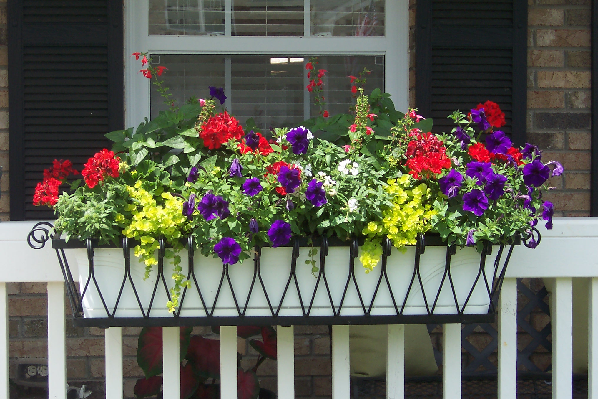 Image of: Deck Rail Planter Boxes with Brackets