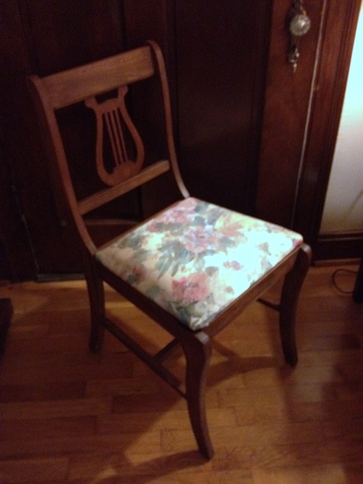 Image of: dining chair cushions style