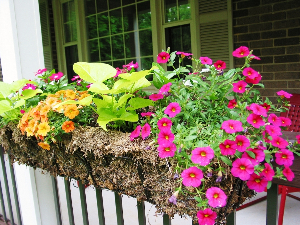 Image of: Eck Rail Planters White Lowe's