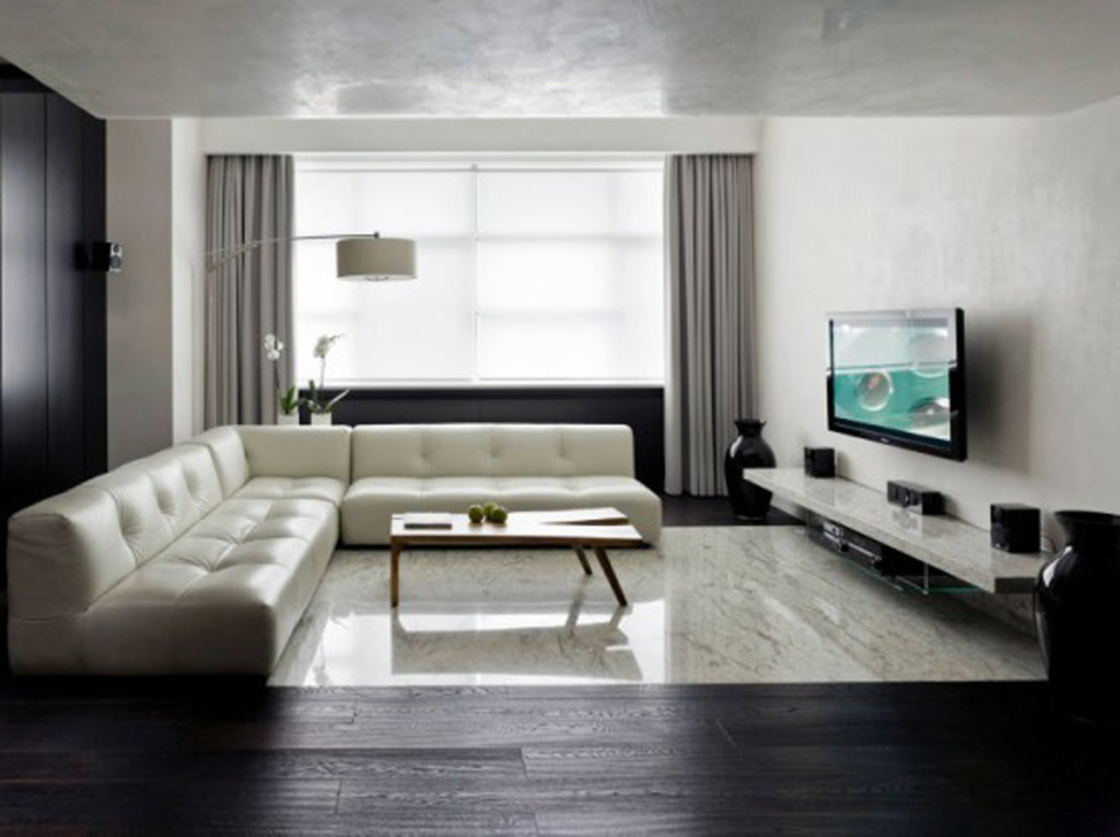 Image of: good apartment living room ideas