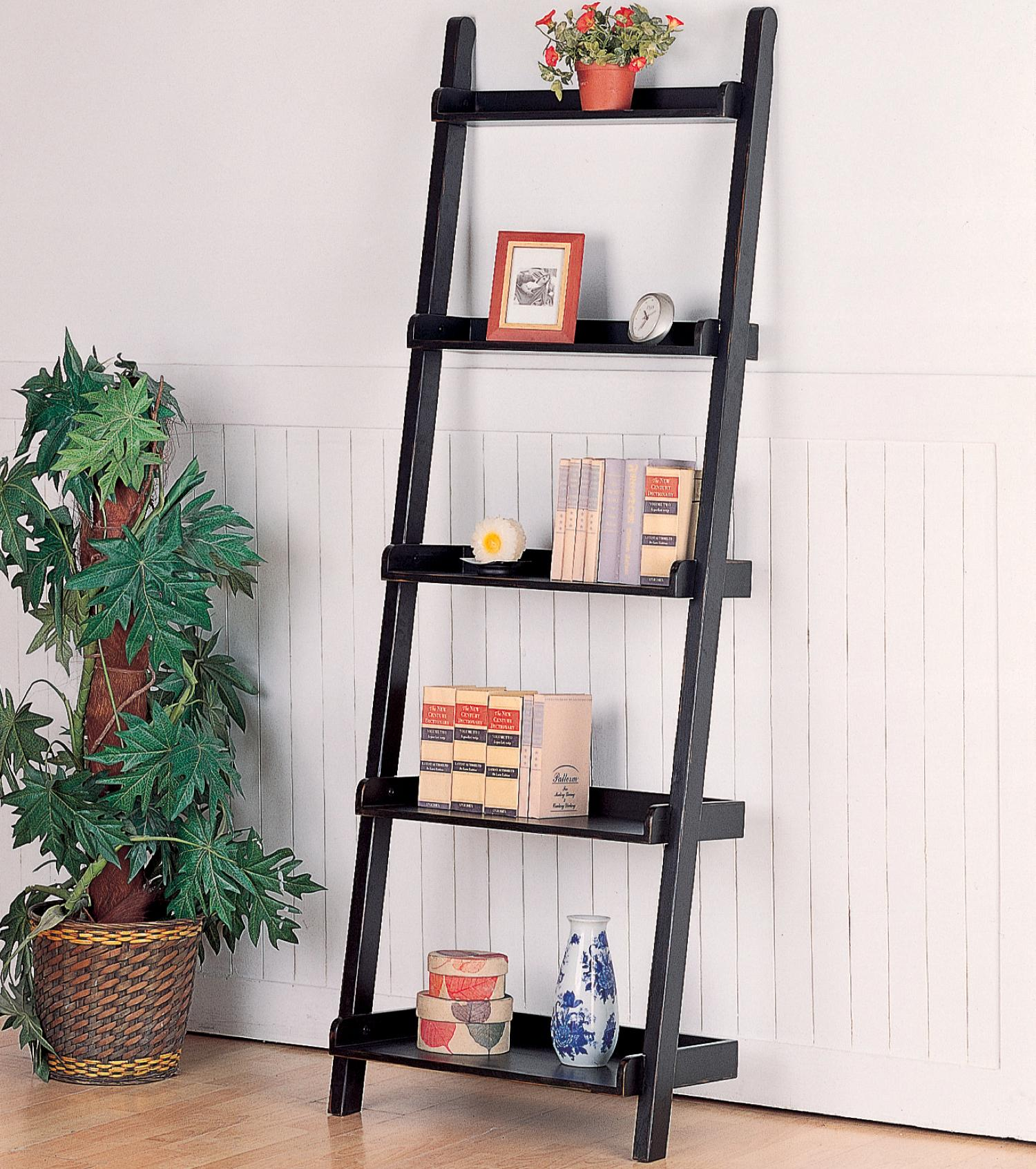 Image of: Ideas Ladder Bookcase  2018
