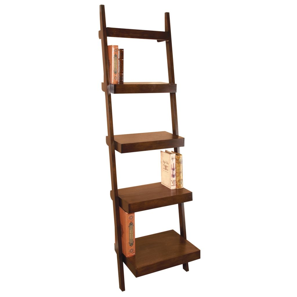 Image of: Leaning Ladder Bookcase Plans