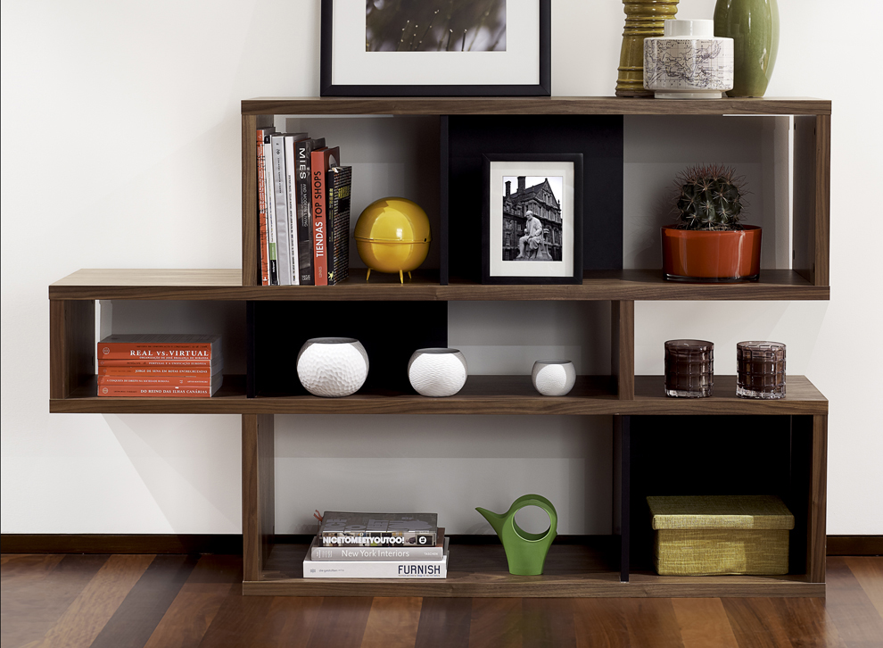 Image of: Modern Bookcase Wood