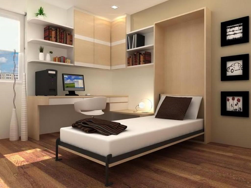 Image of: Modern Murphy Bed With Sofa