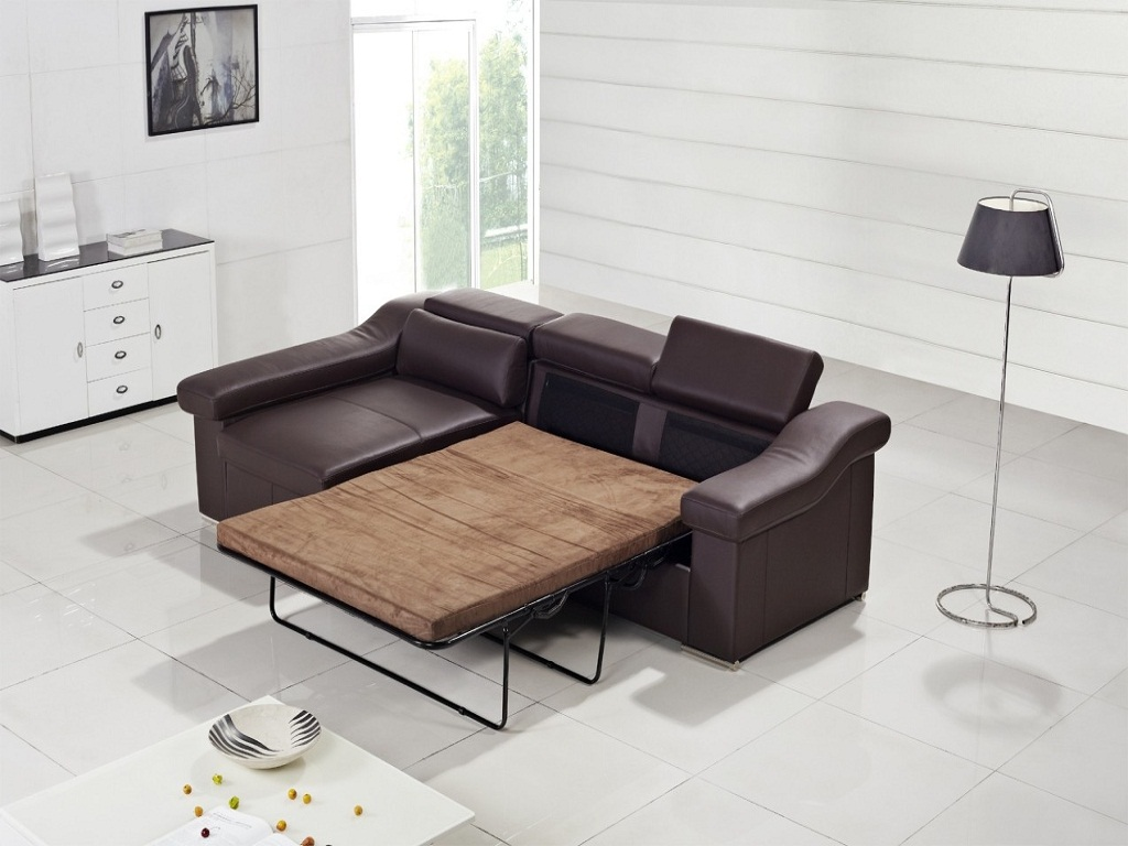 Image of: Modern Sofa Bed Ideas