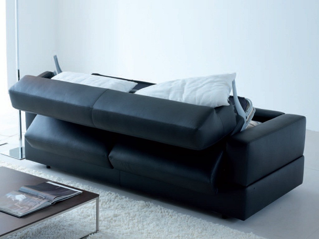 Image of: Modern Sofa Bed Leather