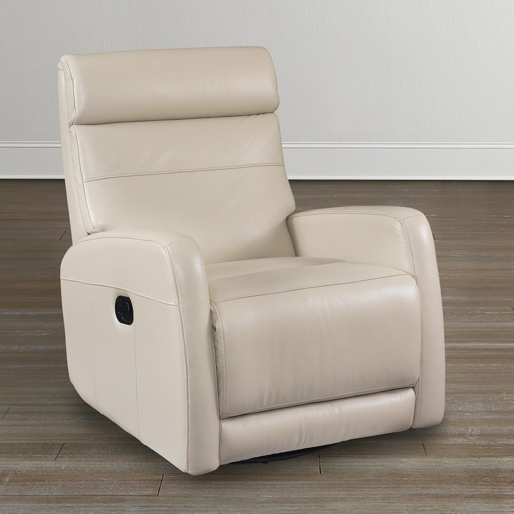 Image of: modern swivel rocking chair style