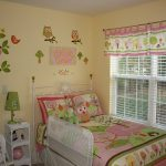 Owl Bedroom Decorating Ideas