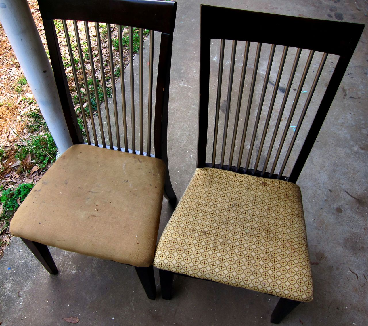 Image of: simple dining chair cushions