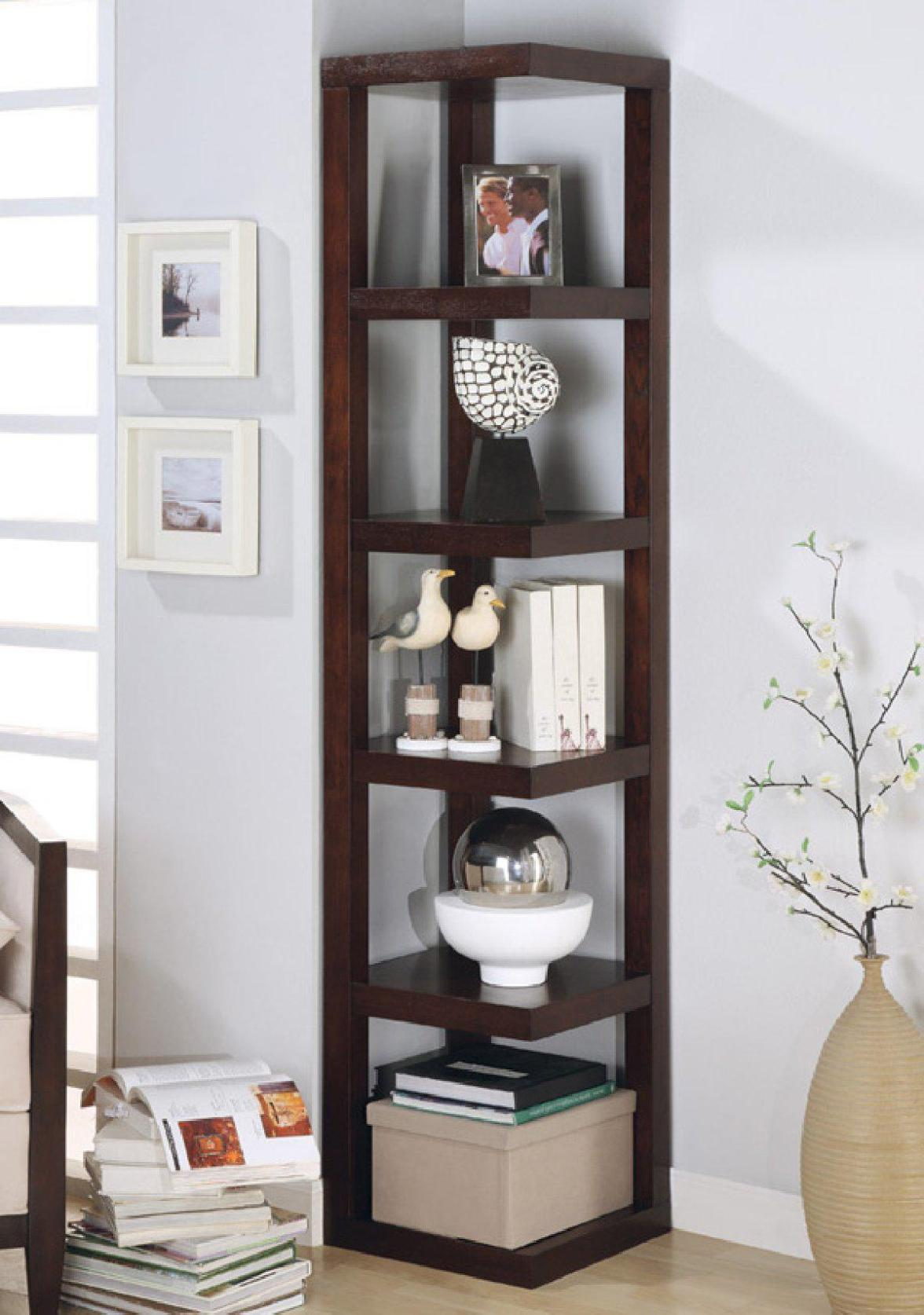 Image of: Tall Narrow Bookcases Ideas