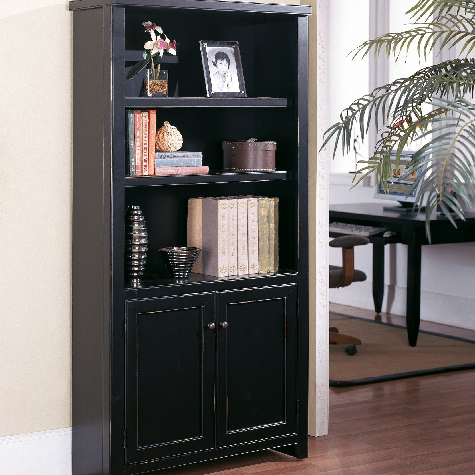Image of: Top Bookcases with Doors