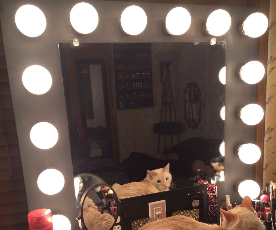 Image of: Vanity Mirror with Light Bulbs Types