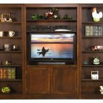 Wall Unit Bookcase and TV